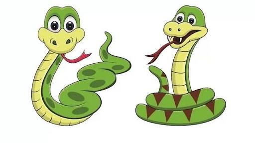 Con rắn là số mấy?
